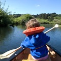 Easy family-friendly water in Beaver Creek Natural Area.- Favorite Estuaries + Lakes to Paddle on the Oregon Coast