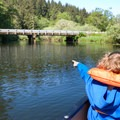 Wildlife watching with kids in Beaver Creek Natural Area.- Favorite Estuaries + Lakes to Paddle on the Oregon Coast