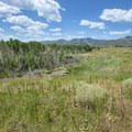 Turkey Creek wetlands at Pelican Point picnic shelter and day use area at Bear Creek Lake Regional Park with the Front Range in the distance.- Denver's Best Parks