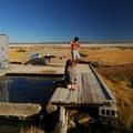 Alvord Hot Springs.- 10 Must-Visit Hot Springs in the West