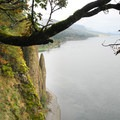 Viewpoint along the Cape Horn Lower Trail.- Hiking in the Columbia River Gorge