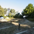 Typical campsite at Dungeness Recreation Area Campground.- Best Year-round Campgrounds in Washington
