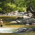 Boulder Creek at Eben G. Fine Park.- City Parks You Definitely Need to Visit