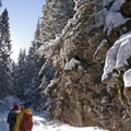 Rocky canyon walls along the New World Gulch Trail.- 14 Hikes in Greater Yellowstone