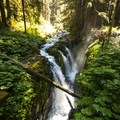 Sol Duc Falls, Olympic National Park.- 20 Incredible Adventures on the Olympic Peninsula