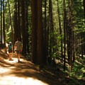 Beginning of Castle Crags Dome Hike.- Mount Shasta's 9 Best Day Hikes