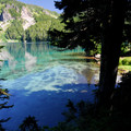 Mowich Lake.- Amazing Alpine Lakes