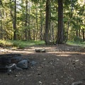 Dispersed campsite on the west side of Ranger Creek Airstrip, Washington.- Dispersed Camping on Public Lands