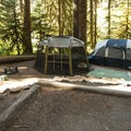 Typical campsite at Loop A, Sol Duc Campground.- Best Year-round Campgrounds in Washington