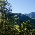 Views from trail to Mount Cammerer.- 16 Must-do Hikes in Great Smoky Mountain National Park