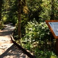 Shadow of the Sentinels trailhead.- Complete Guide to Baker Lake