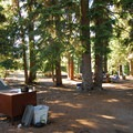 Typical campsite at Mazama Village.- Camping Near Crater Lake National Park