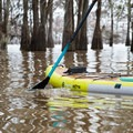 Paddling the Bote HD Aero Stand-up Paddleboard on calm water in a shady Louisiana grove.- Gear Review: Bote HD Aero Stand-up Paddleboard