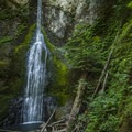 Marymere Falls, Olympic National Park.- Olympic Peninsula Waterfall Road Trip