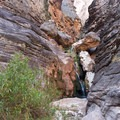 Elves Chasm, which is only accessible by river or a long canyoneering journey.- Grand Canyon National Park