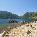 Lake Cushman, North Shore East swimming spot.- Washington's 50 Best Swimming Holes