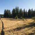 Linton Meadows on the west side of the Three Sisters, between Middle Sister and The Husband.- Oregon's Best Backpacking Trips