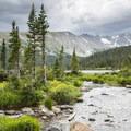 Week 8: Wilderness Area- 52 Week Adventure Challenge