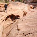 Fry Canyon is a technical descent that requires ropes and other special gear.- Bears Ears National Monument