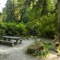 Typical campsite at Lyre River Campground.- Best Year-round Campgrounds in Washington