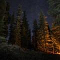 Week 23: A Night in the Woods- 52 Week Adventure Challenge