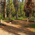Typical campsite with bear locker at Lost Creek Campground.- A Guide to Camping in Oregon