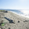 Fort Flagler State Park north beach.- 5 Great Reasons to Explore Port Townsend
