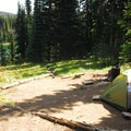 A primitive campsite at Sunrise Camp in Washington.- The Beginner's Guide to Car Camping