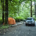 Typical campsite at Elwha Campground.- Best Year-round Campgrounds in Washington