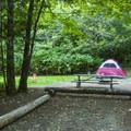 Typical campsite at Potlatch State Park Campground North Loop.- A Complete Guide to Camping Near Seattle