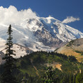View of Mount Rainier (14,411 ft) from Sunrise Rim Trail.- A 3-Day Itinerary for Mount Rainier