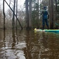 Quietly drifting through Saline Bayou.- Adventurer's Guide to Northern Louisiana