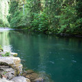 A large and deep pool for jumping and swimming on the Molalla River at Day Use Site 2.- 31 Best Beaches + Swimming Holes in-and-around Portland, Oregon