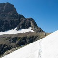 Crossing a snowfield in late July on approach to Mount Reynolds.- Glacier National Park