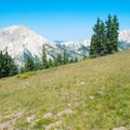 View of Mount Baldy and Mount Belknap near Skyline Trail.- Best Hikes to See Mountain Goats