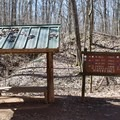 Information signs along the Montgomery Bell Trail. - 10 Must-Do Hikes Near Nashville, Tennessee