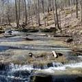 Creek alongside Montgomery Bell Trail.- 10 Must-Do Hikes Near Nashville, Tennessee
