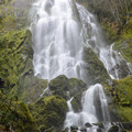 Moon Falls.- Oregon's 75 Best Day Hikes