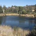 Upper Franklin Reservoir, Franklin Canyon Park.- L.A.'s 15 Best Kid-Friendly Hikes