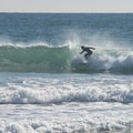Surfer at Topenga State Beach.- Surfer's Guide to LA