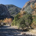 Malibu Creek, Malibu Creek State Park.- Best of Malibu: Beaches, Camping, Parks and Trails