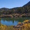 While the the fall colors in this area are not spectacular, they are still very pretty. The summer wildlfowers are great, however.- A Weekend in Little Cottonwood Canyon