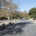 Leo Carrillo State Park Campground.- Best of Malibu: Beaches, Camping, Parks and Trails