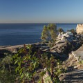 View of Sunken City Landslide from perimeter fence.- 15 Incredible Adventures in L.A.