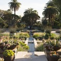 View into the Palm Garden at Huntington Gardens.- City Parks You Definitely Need to Visit