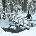 Crossing a short bridge over East Fork Hood River on the way to Tamanawas Falls.- Snowshoeing on Mount Hood