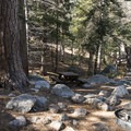 Typical campsite at Buckhorn Campground.- A Guide to Camping Near L.A.