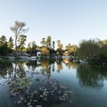 Chinese Garden at Huntington Gardens.- City Parks You Definitely Need to Visit