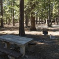 Day use picnic area at Crystal Lake Recreation Area Campground.- Crystal Lake Recreation Area