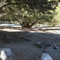 Typical campsite at Crystal Lake Recreation Area Campground.- Crystal Lake Recreation Area